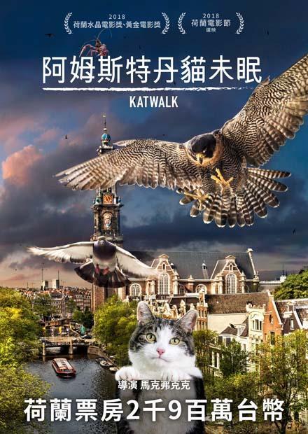 阿姆斯特丹貓未眠 : Katwalk